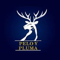 necktie supplier PELO Y PLUMA